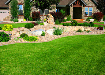 Maintain the Beauty of Your Lawn